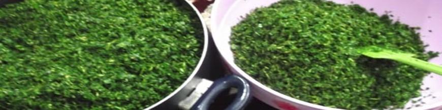 Freezed herbs